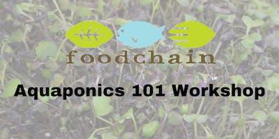 Aquaponics 101: A Workshop for Hobbyests!