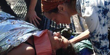The Medic: Assessing Injuries in the Field Workshop tickets
