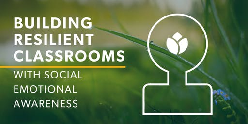 Building Resilient Classrooms with Social Emotional Awareness