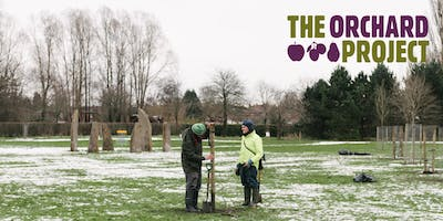 Community Orchard Maintenance Day with Manchester Disc Golf