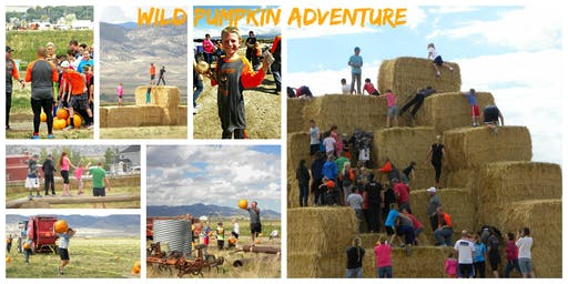 Wild Pumpkin Adventure 2019