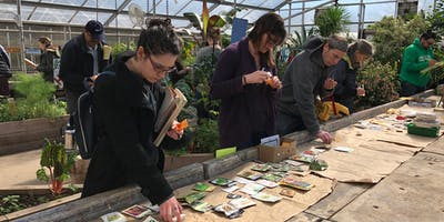 Seed Selecting Event