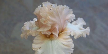 The Delaware Valley Iris Society Sale tickets