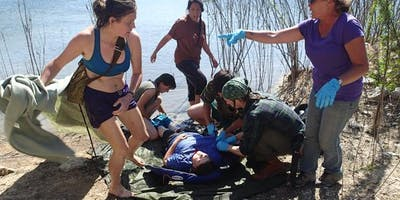 The Medic: Water Rescue