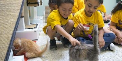 Animal Adventurers Workshop: Paint and Pet (Kids 8-12)