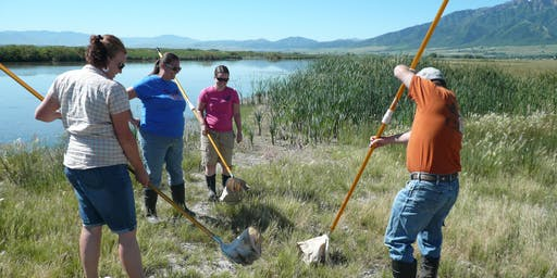 Utah Master Naturalist Watershed Investigations Course - Stokes Nature Center