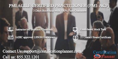 PMI Agile Certified Practitioner (PMI-ACP) 3 Days Classroom in Wichita