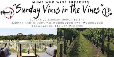 Sunday Vino in the Vines