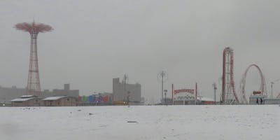 Winter Wonderland! Brooklyn: Coney Island and Coney Island Creek Photography & Nature Walk