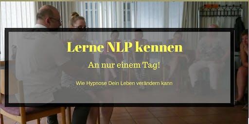 NLP an einem Tag (Mannheim)
