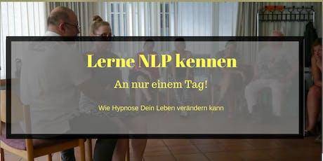 NLP an einem Tag (Frankfurt) Tickets