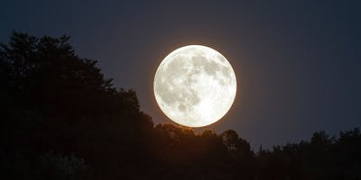 Observe the Moon at Ponderosa Joint-Use Branch!