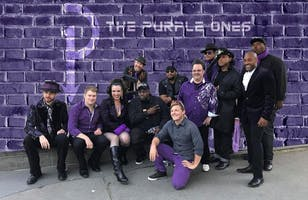 The Purple Ones - The Insatiable Tribute to Prince