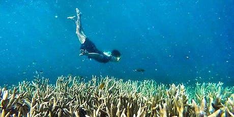 Wisata Open Trip Pulau Harapan Kepulauan Seribu IDR 350K/pax tickets