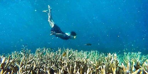 Wisata Open Trip Pulau Harapan Kepulauan Seribu IDR 350K/pax