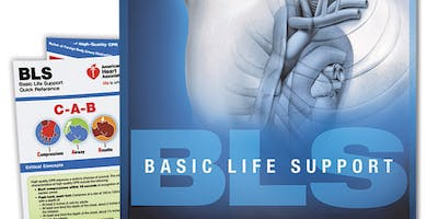 AHA BLS Provider Certification October 28, 2019 from 10 AM to 2 PM at Saving American Hearts, Inc. 6165 Lehman Drive Suite 202 Colorado Springs, Colorado 80918.