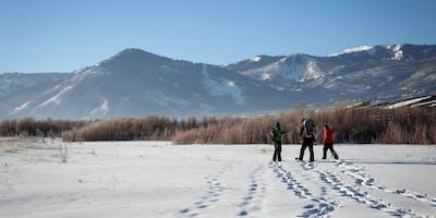 Swaner Preserve Nature Walk/Snowshoe 2019