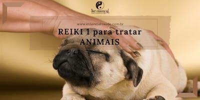CURSO: Reiki nível 1 para tratar animais