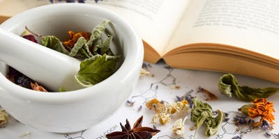 Foundations of Herbalism - The Urinary System & Hydrotherapy Workshop