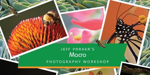 MACRO Photography Workshop in Central Texas