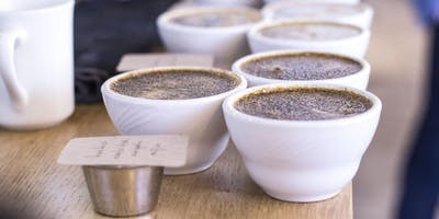 Blue Bottle Coffee Lab – Coffee Cupping – Webster Street