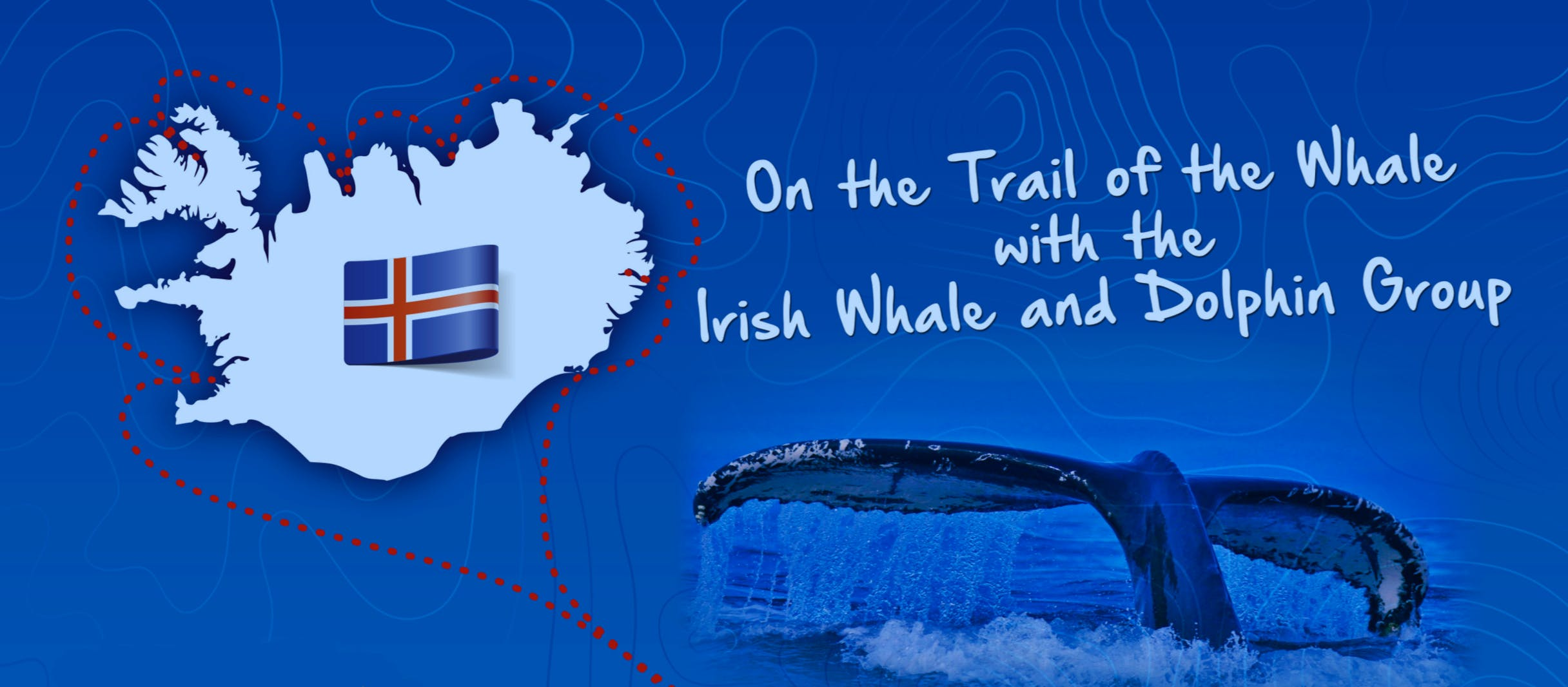 On The Trail of the Whale Library Tour - Location: Killarney