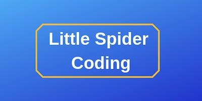 Little Spider Coding Registration