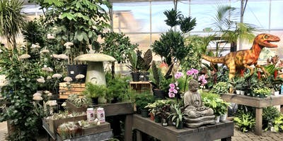 Your Houseplants and YOU!