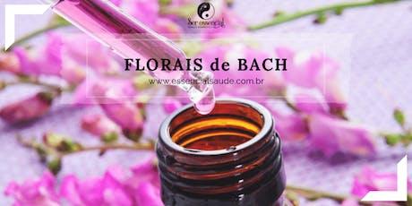 Curso de Florais de Bach com Sheila Teixeira ingressos