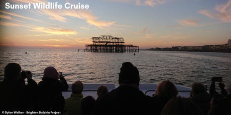 Sunset Wildlife Cruise tickets