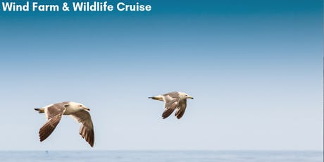 Wind Farm and Wildlife Cruise tickets