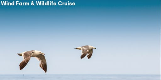 Wind Farm and Wildlife Cruise