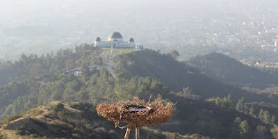 Sunset Hiking Meditation at Griffith Park Observatory