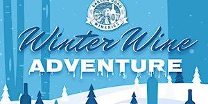 Winter Wine Adventure