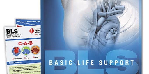 AHA BLS Provider Certification November 4, 2019 from 10 AM to 2 PM at Saving American Hearts, Inc. 6165 Lehman Drive Suite 202 Colorado Springs, Colorado 80918.