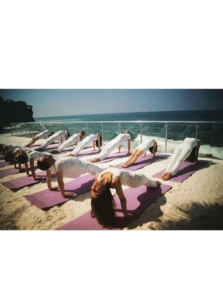 Yoga Academy USA Original Yoga System