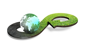 Profitable Business thru Innovative Supply Chain Loop