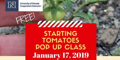 FREE Starting Tomatoes Pop Up Class
