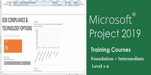 MS.Project 2019 Training Courses - Weekends Classes | Toronto