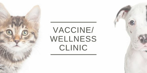 Wellness and Vaccine Clinic (Lewis Center)