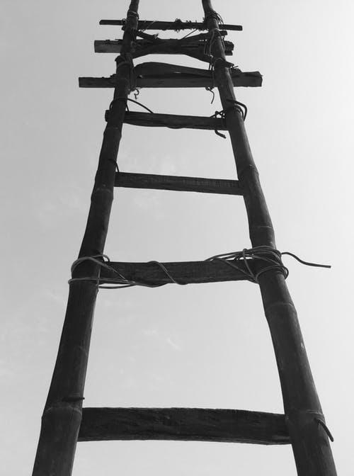 2019 Ladder - Winter Season