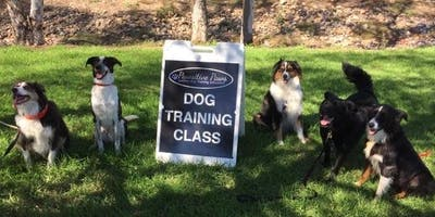 Come, Sit, Stay: Dog Training Seminar (Adult)
