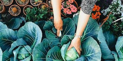Mastering Gardening Skills