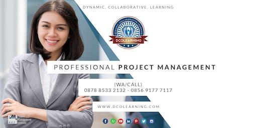 Professional Project Management