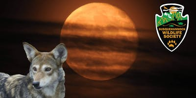 Wolf Moon Eclipse Viewing & Wild Canine Talk