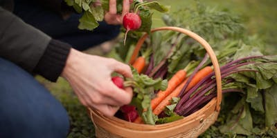 Seed to Supper: Free Gardening Class