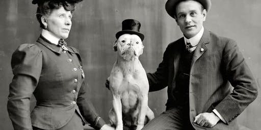Steampunk Pooch Competition at Hastings Circus of Curiosities 15/9/2019