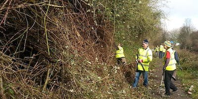 IWA West Country Canal Clean-up
