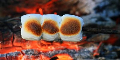 Summer Campfire, Dens and S'mores at Ryton Pools Country Park