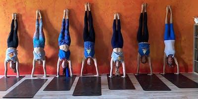 Advanced Yoga and Biomechanics of Inversion and Arm Balancing Workshop